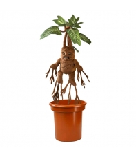 Teddy Harry Potter Mandrake 48 cm