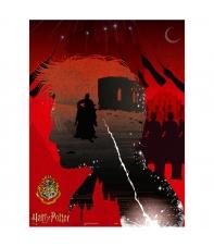 Puzzle Harry Potter The Secret Horcrux 1000 piezas