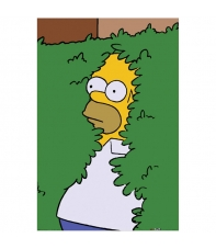 Poster The Simpsons Homer in Bush, 91,5 x 61 cm