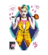 Poster Dc Birds of Prey Harley Quinn, 91,5 x 61 cm