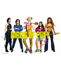 Poster Dc Birds of Prey Personajes